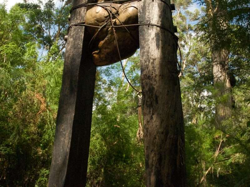 'Bound' by Alex and Nic Mickle is located along the Understory Art & Nature Trail in Northcliffe, Western Australia. It was commissioned by Southern Forest Arts in 2006