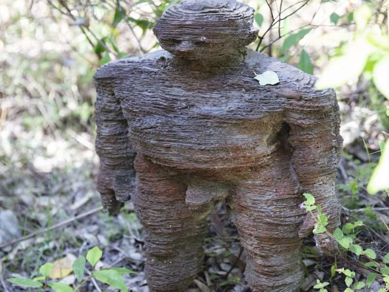 Layers & Then There's Layers (Forest Folk) by Richie Kuhaupt - Understory Art & Nature Trail, Northcliffe, commissioned by Southern Forest Arts in 2006, Photo by Bo Wong (2020)
