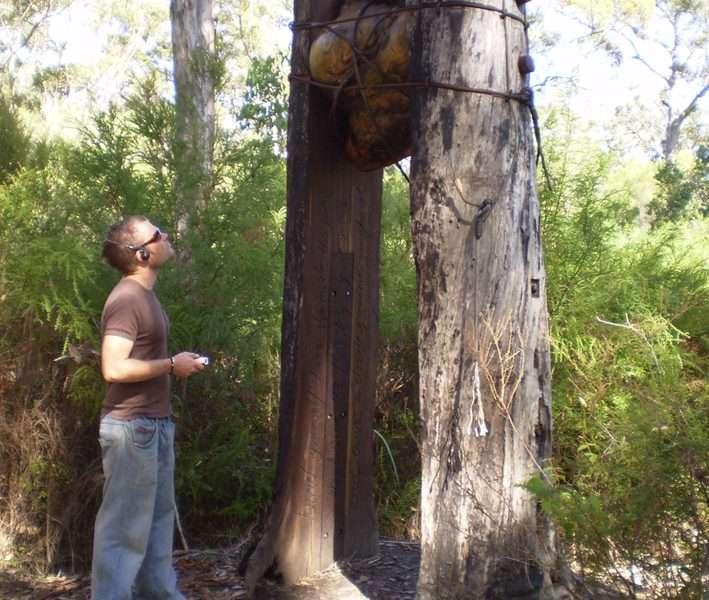A & N Mickle's ' Bound' with visitor, Understory Art & Nature Trail
