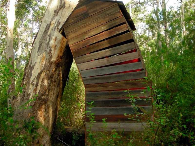 Cornelia Konrads, Australia House (3) Understory Art & Nature Trail, Northcliffe, 2008