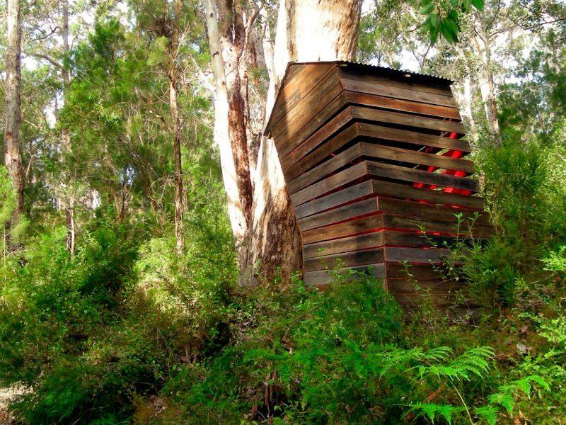 Cornelia Konrads, Australia House, Understory Art & Nature Trail, Northcliffe, 2008