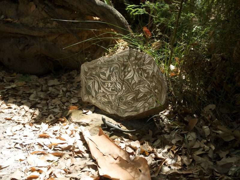 'Forest Stones - Lizard Nook' by Kati Thamo, Understory Art & Nature Trail, Northcliffe, commissioned by Southern Forest Arts in 2006, Photo by RAA