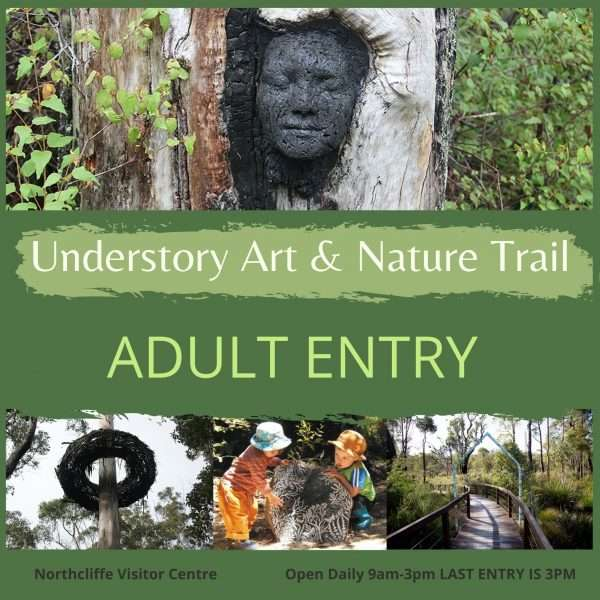 Purchase an adult entry ticket to the understory Art & Nature Trail in Northcliffe, Western Australia. Managed by Southern Forest Arts