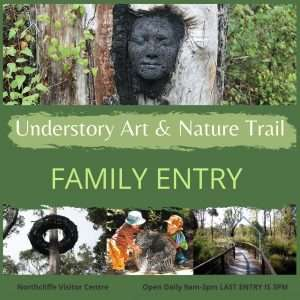 Purchase a Family entry ticket to the understory Art & Nature Trail in Northcliffe, Western Australia. Managed by Southern Forest Arts