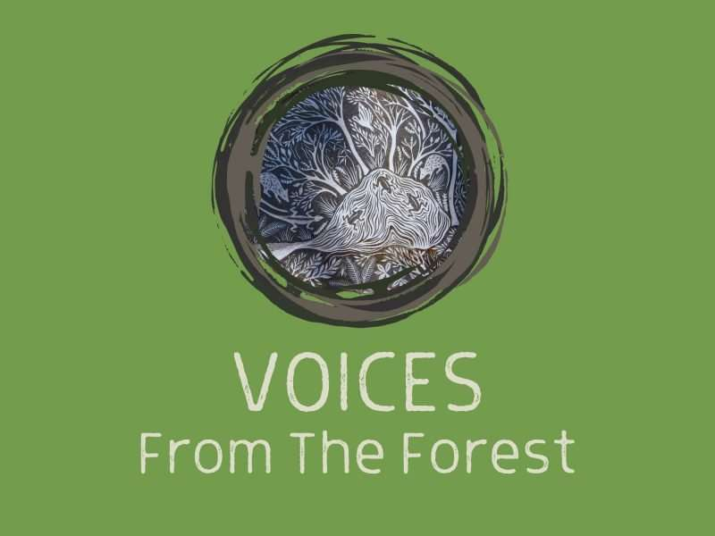 Voices From The Forest Podcast by Southern Forest Arts