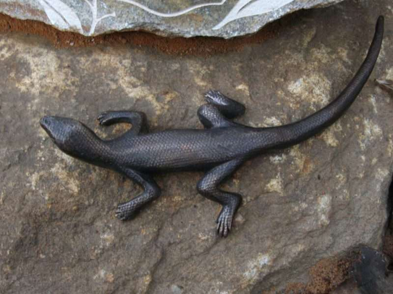 bronze lizard from Forest Stones' series by Kati Thamo, Understory Art & Nature Trail, Northcliffe