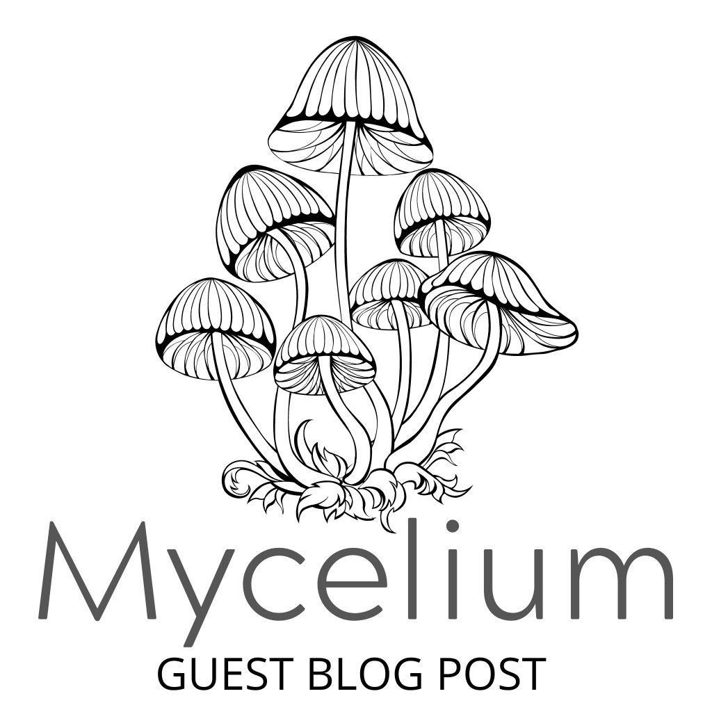 Mycelium Guest Blog Post feature image