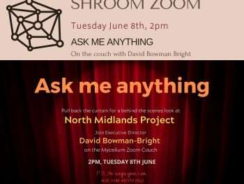 Shroom Zoom - Ask me Anything