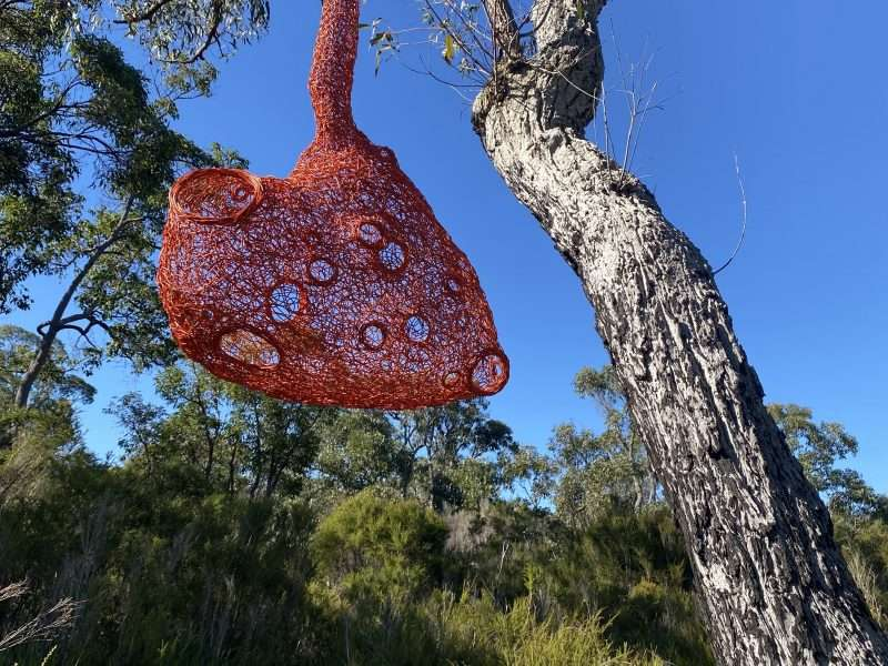 Imagine More by Fiona Gavino, sculpture for Understory Art & Nature trail, Northcliffe, WA by Southern Forest Arts